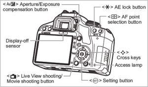 back of camera
