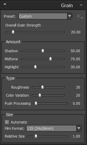 Alien Skin Exposure settings for realistic film grain.