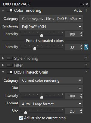 Settings for the absolute best, most realistic film grain achievable in a photo.