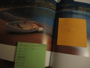 peter lik book notes